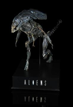 Aliens Lot8 (1)