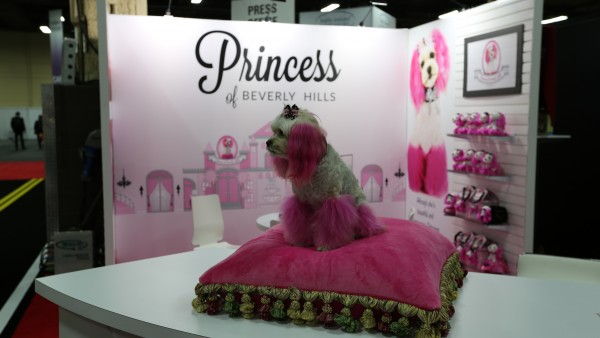 licensing-expo-2015-image-85