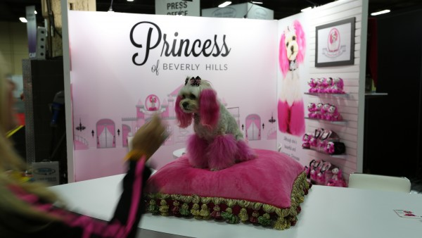 licensing-expo-2015-image-86
