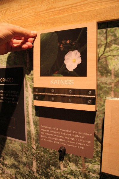 hunger-games-experience-foraging-2