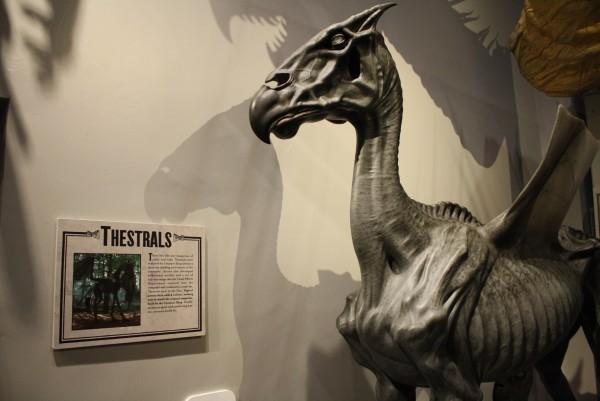 Tour Harry Potter Studio Londres Imagen (222)