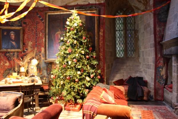 Tour Harry Potter Studio Londres Imagen (54)