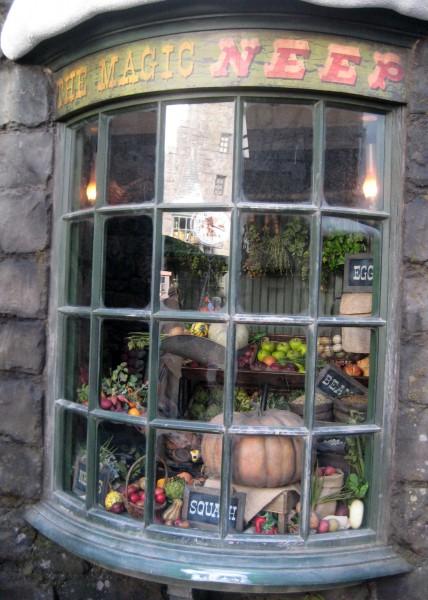wizarding-world-of-harry-potter-128
