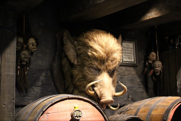 wizarding-world-of-harry-potter-hogs-head-12