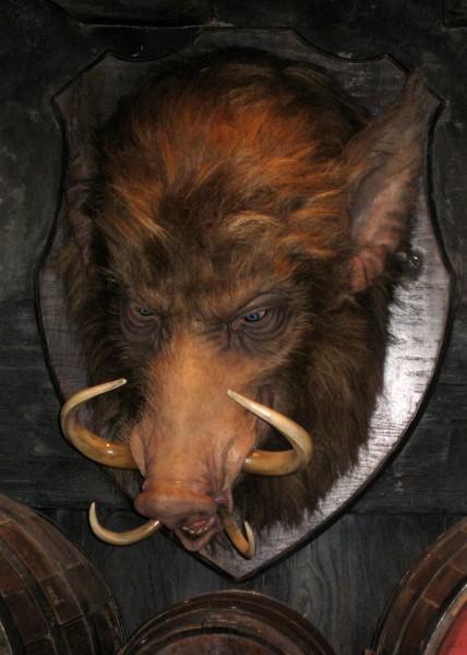 wizarding-world-of-harry-potter-hogs-head