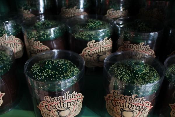 wizarding-world-of-harry-potter-honeydukes-28